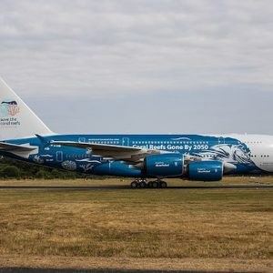 "A380-800 (HIFLY ""Save the Coral Reefs"") 9H-MIP with Stand (JC Wings EW2388004)"