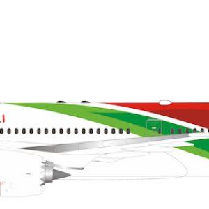 B787-9 Dreamliner (RAM, Royal Air Maroc) CN-RGZ With Stand (Inflight 200 IF789CN1219)