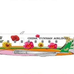 Canadair CRJ200ER (China Yunnan Airlines) B-3070 With Stand (JC Wings LH2184)