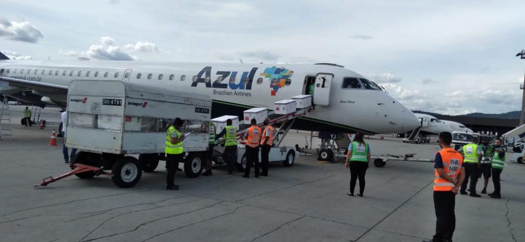 Azul transporta, em 14 horas, mais de dois milhões de doses de vacina para 12 capitais do Brasil (com vídeo)